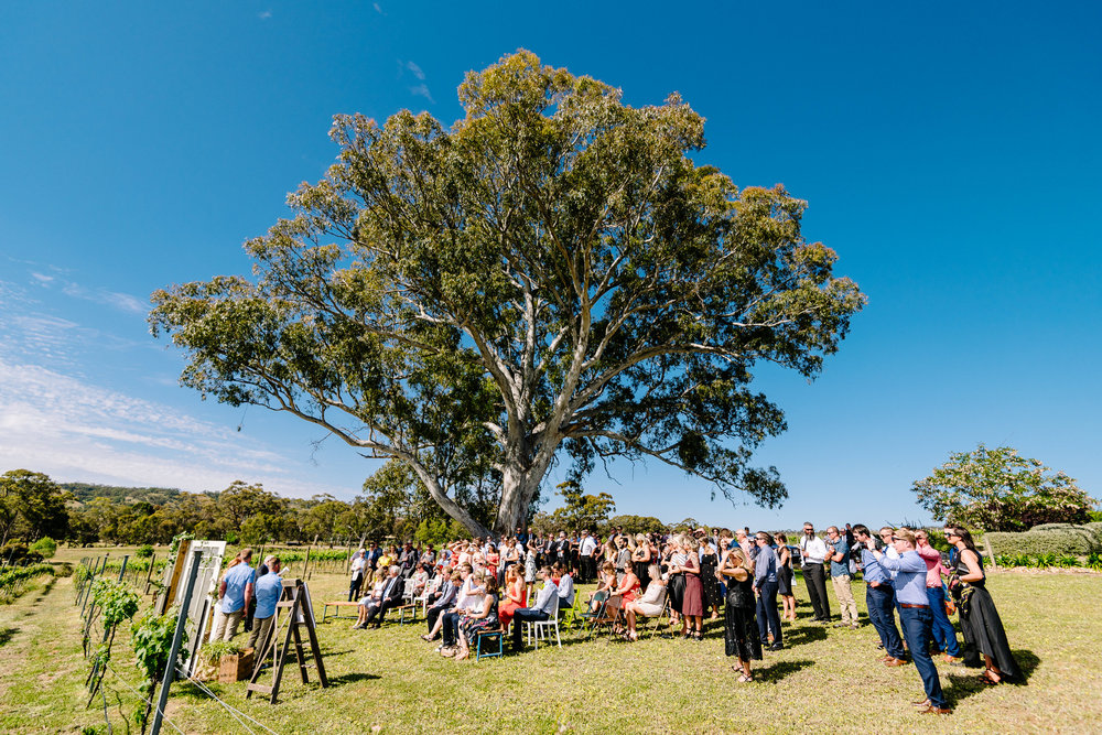Bendigo_Wedding_Photography_Justin_Jim_BelvoirPark-142.JPG
