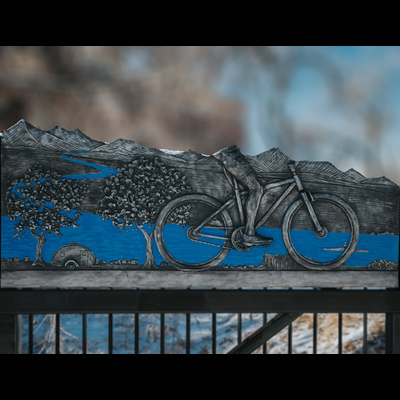 Bicycle panel 400x400 for website.jpg