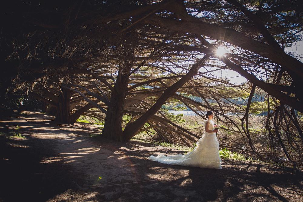 sunshine-coast-wedding-photographer-all-the-love-in-the-world-noosa-mooloolaba-glasshouse-brisbane-026.jpg