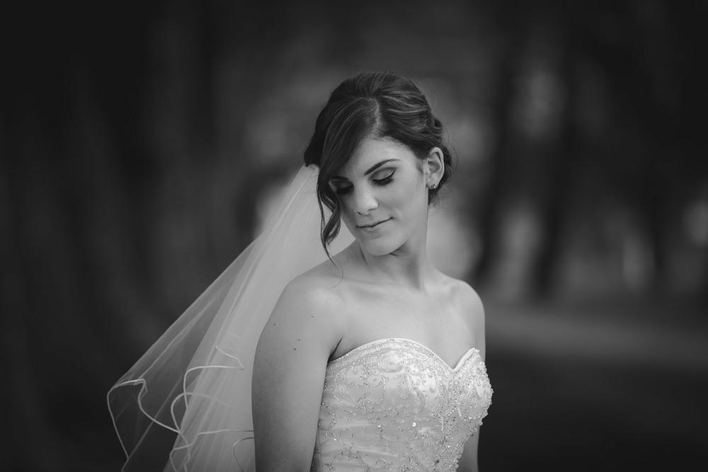 Most Popular Sunshine Coast Wedding Photographers - Australian Destination, Montville