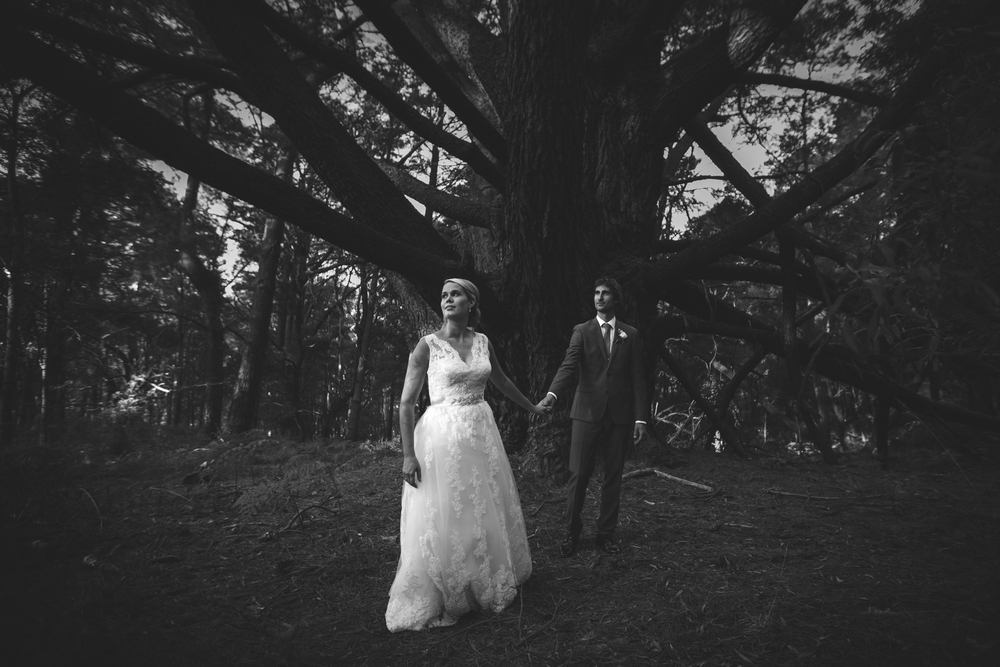 Brisbane Destination Wedding Photographer, Australian - Montville, Sunshine Coast Hinterland Pre Elopement