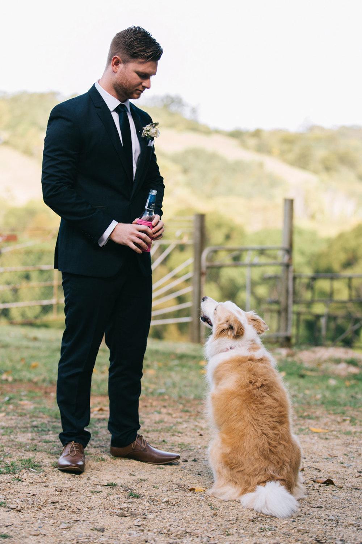 Flaxton Wedding Photographers - Best Sunshine Coast, Australian Destination Elopement Packages