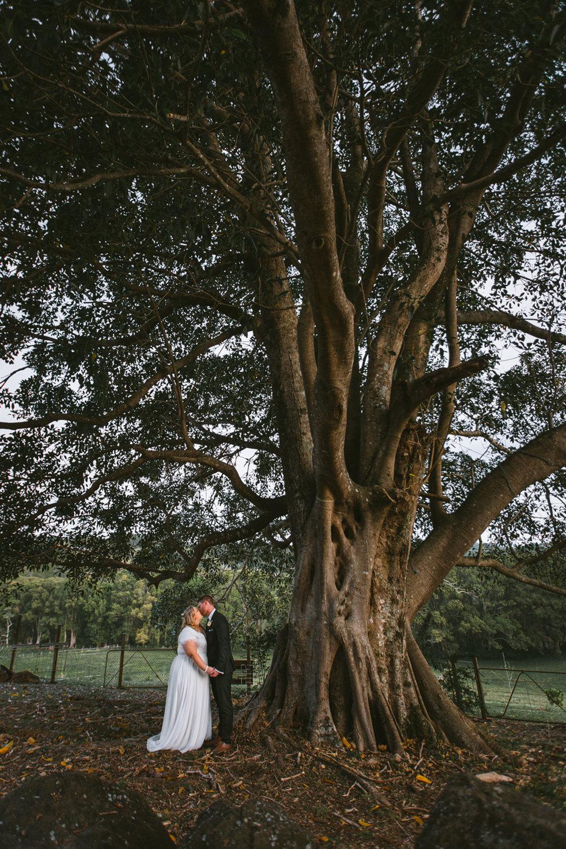 Maleny Wedding Photographers - Sunshine Coast, Australian Destination Photographers