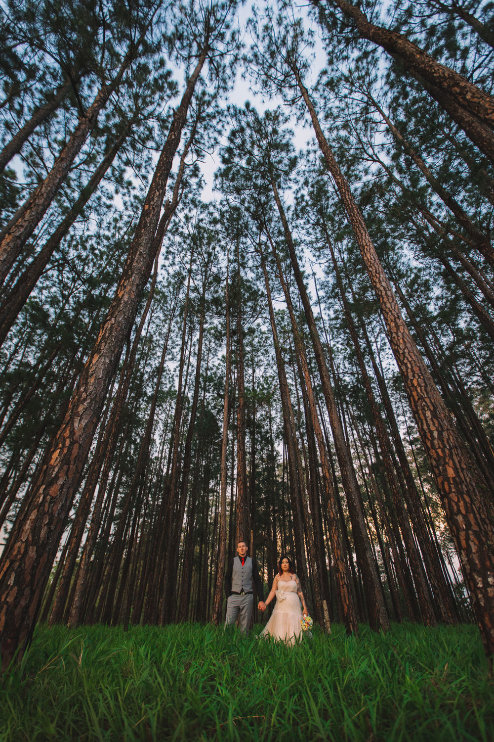 Peachester Wedding - Sunshine Coast, Australian Photographer