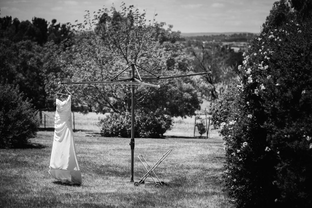 Best Sunshine Coast, Australian Destination Wedding Photographer - Maleny and Brisbane, Queensland Photography Eco Elopement Packages
