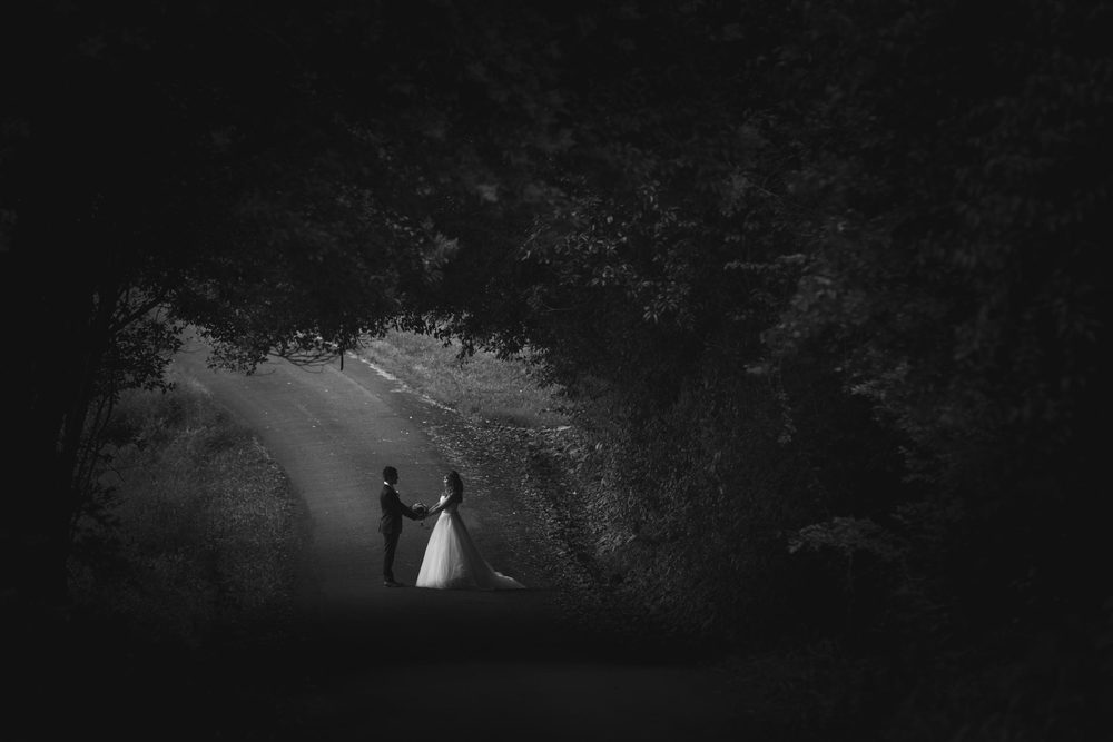 Sunshine Coast and Brisbane Australian Photographers - Tranquil Park, Maleny Destination Wedding