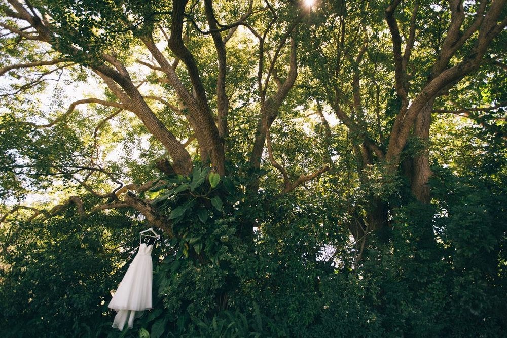 Vintage Wedding Dress Photos - Cooroy, Sunshine Coast, Australian Photographer