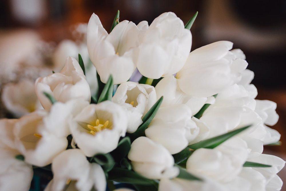 Sunshine Coast, Australian Pre Wedding Destination Bouquet Photographers - Maleny, Brisbane, Queensland Hinterland