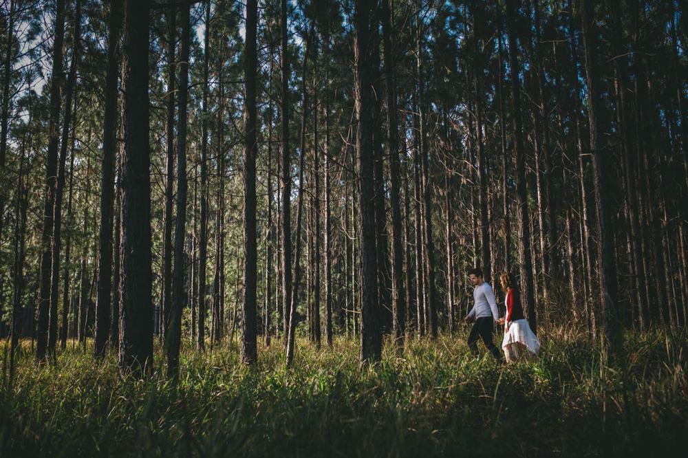 Best Sunshine Coast, Australian Pre Wedding Engagement Photographers - Destination Maleny, Brisbane