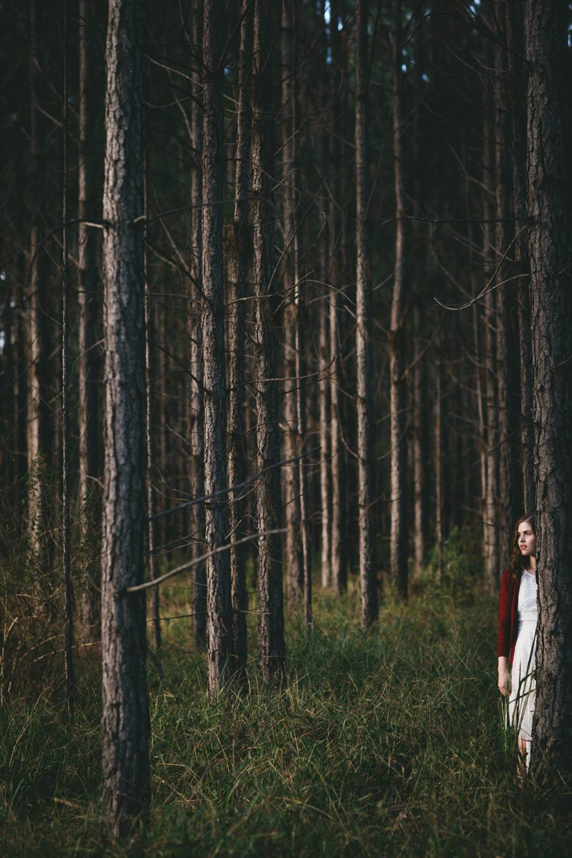 Awesome Sunshine Coast, Australian Destination Pre Wedding Photographer - Brisbane, Flaxton Engagement Portrait
