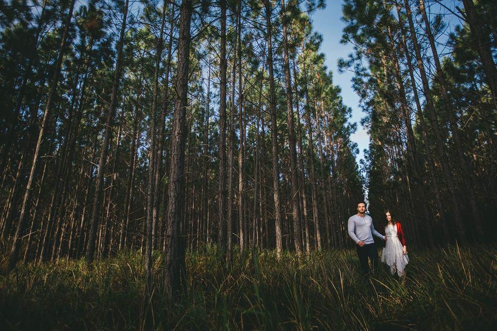 Beautiful Maleny, Queensland, Australian Pre Wedding Engagement Portrait Photographer - Brisbane, Montville