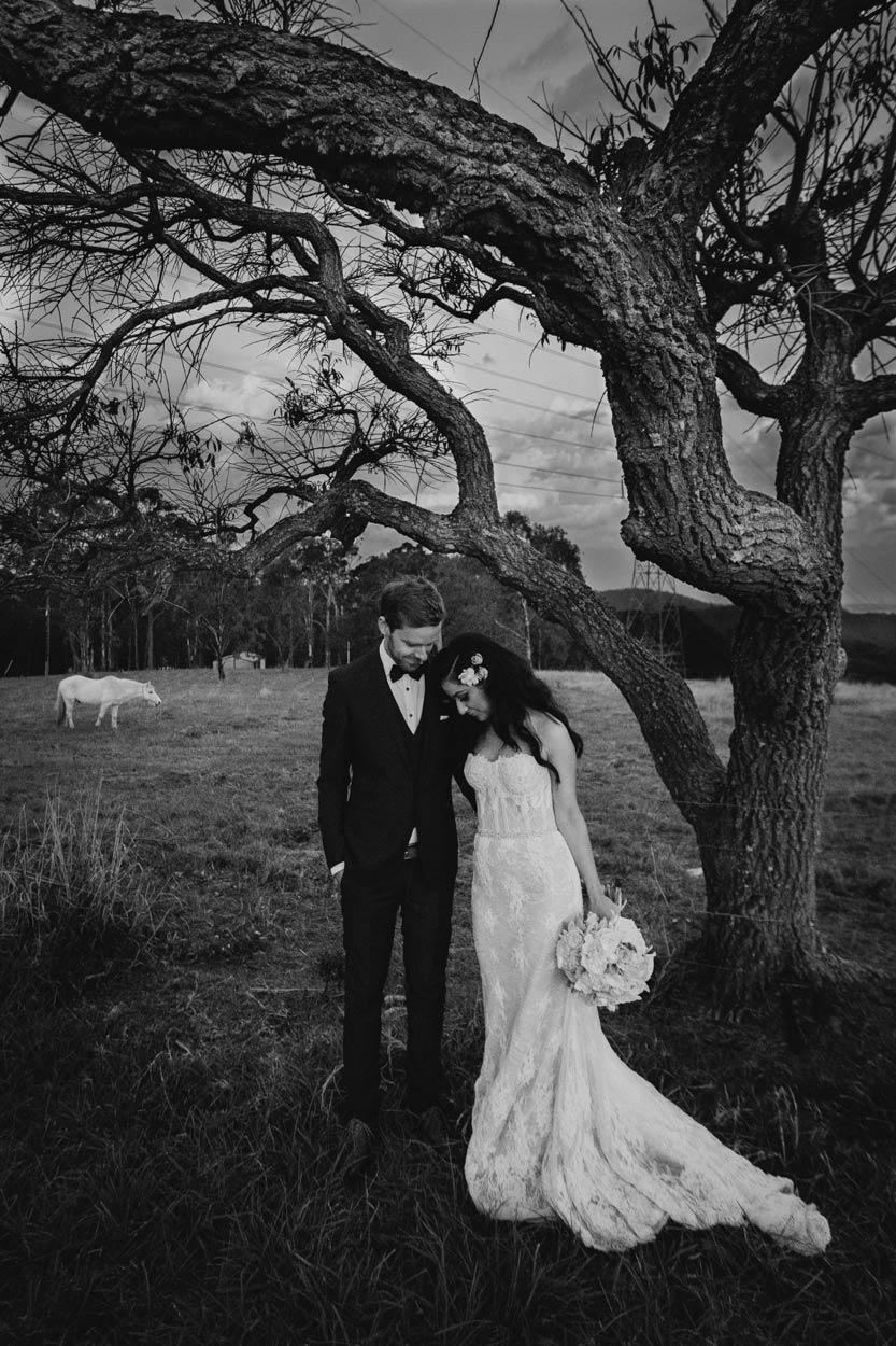 Amazing Mount Tamborine, Gold Coast Destination Wedding Photographer - Brisbane, Australian Blog Photos