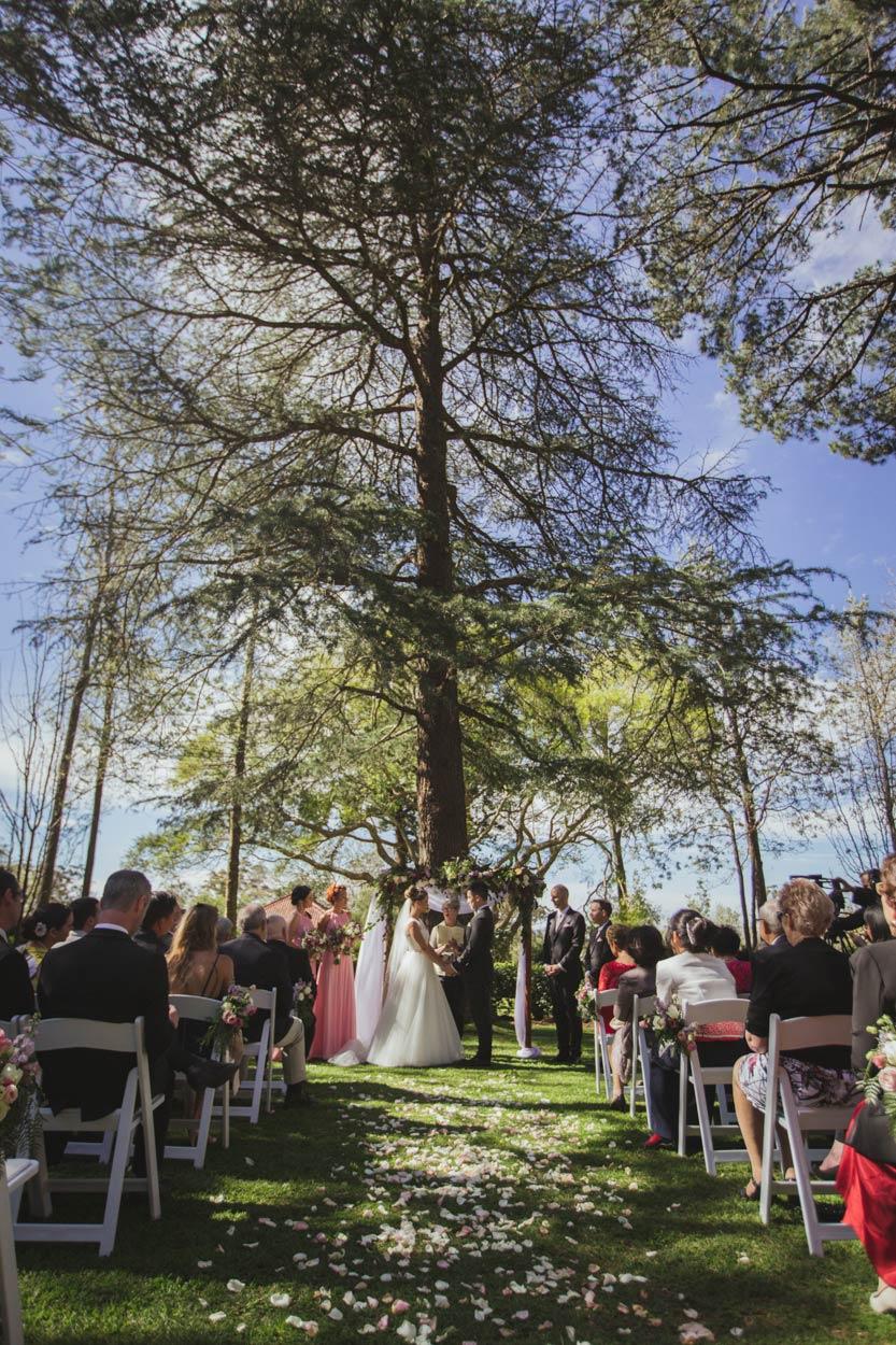 Fairytale Gabbinbar Destination Wedding Photographers - Brisbane, Sunshine Coast, Australian Blog Photos