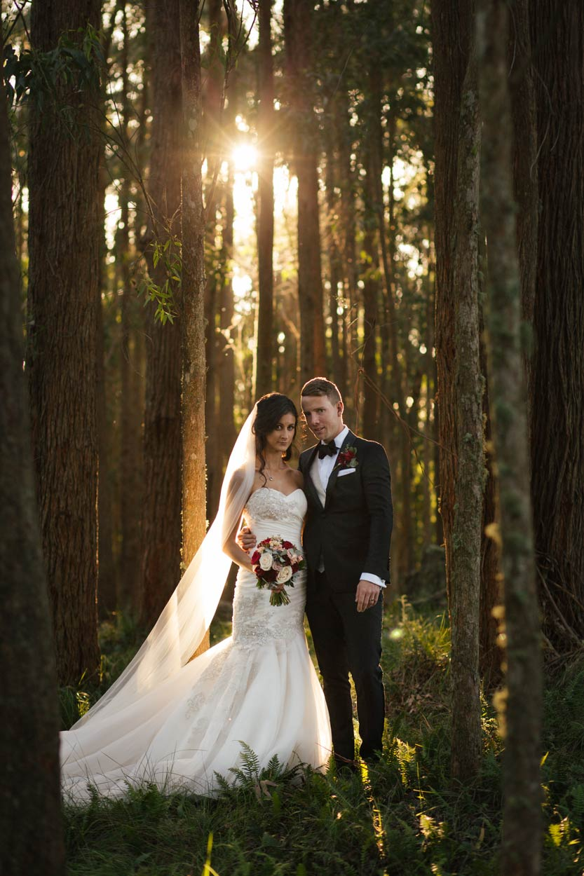 Creative Maleny Pre Destination Wedding Photographers - Brisbane, Sunshine Coast, Australian Elopement