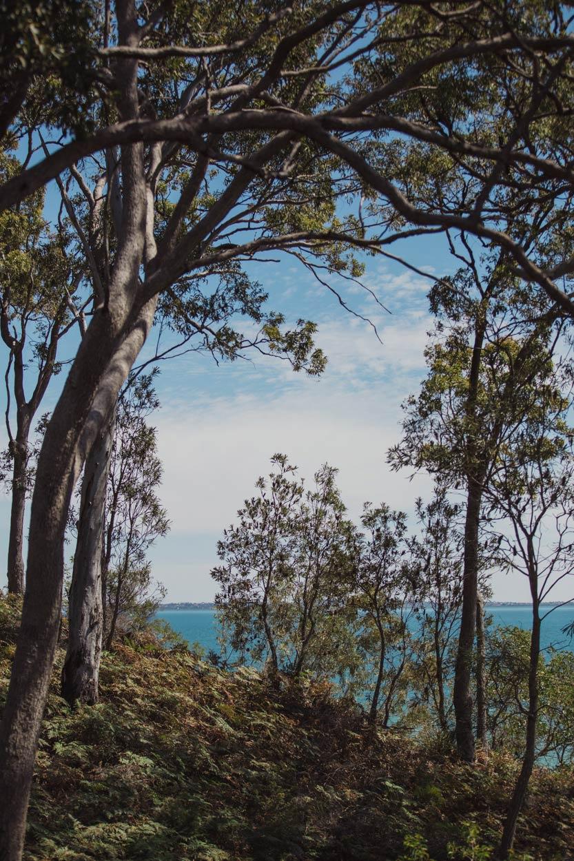 Noosa Heads, Sunshine Coast, Queensland Wedding - Australian Eco Destination Photographer Blog