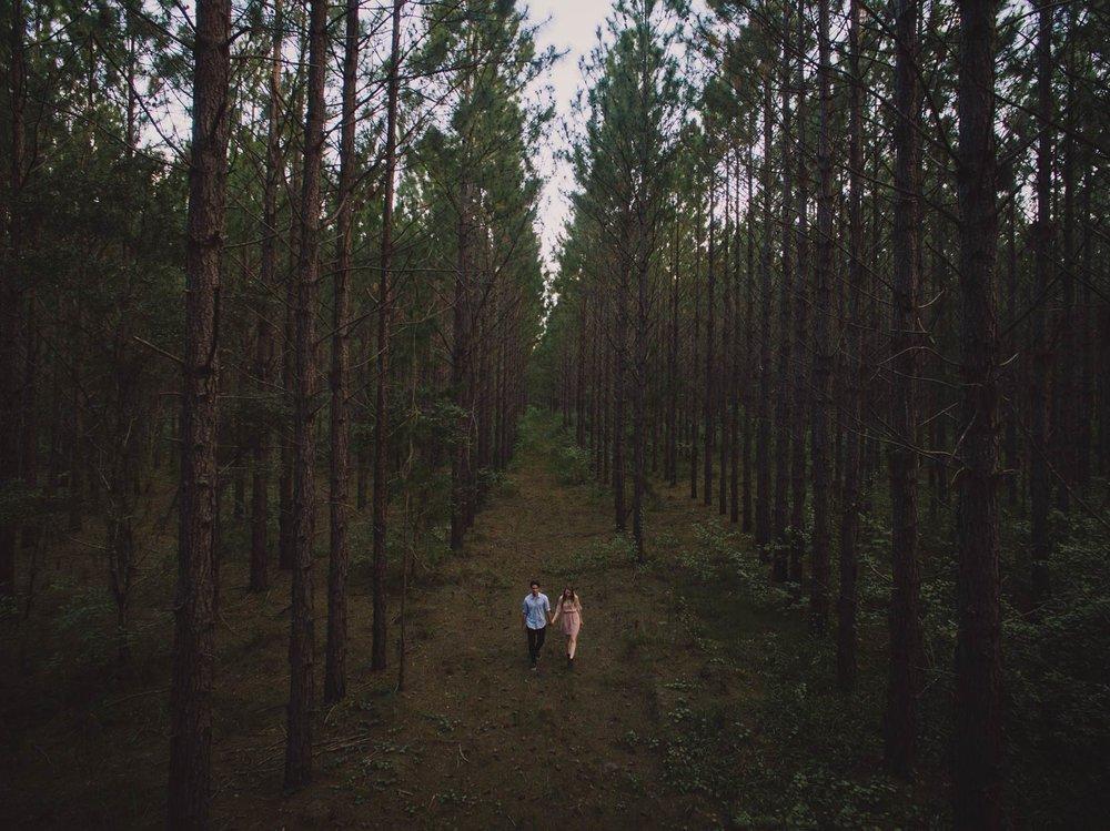 Montville & Maleny Destination Wedding Photographers - Sunshine Coast, Queensland, Australian Blog Photos