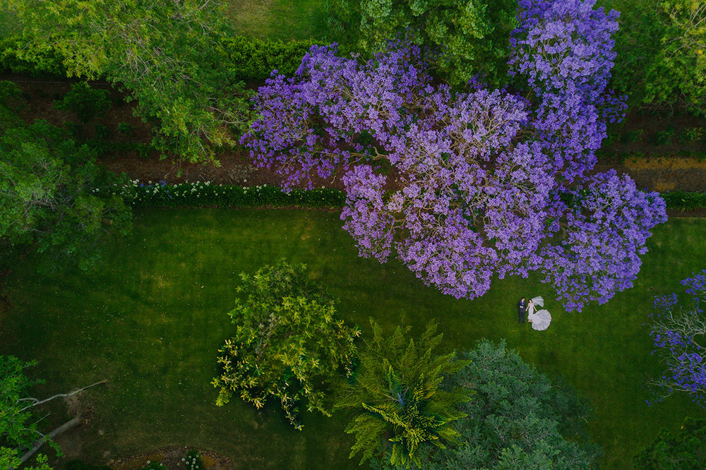 Best Gabbinbar Homestead, Toowoomba Drone Destination Wedding Photographer, Sunshine Coast - Queensland, Australian Blog