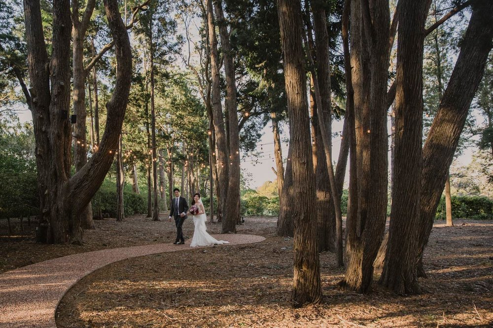 Noosa & Maleny, Sunshine Coast Destination Wedding Portrait Photographers - Queensland, Australian Blog Photography