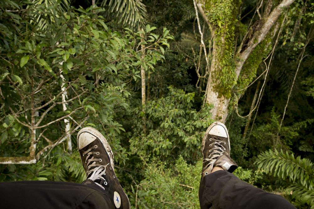Exploring the rainforest canopy