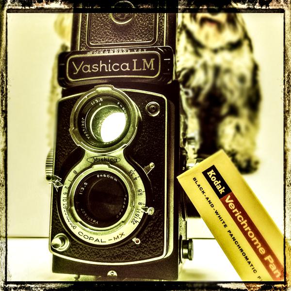 Yashica LM Twin-Lens Reflex