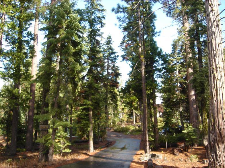 Lake_Tahoe_07-036.JPG