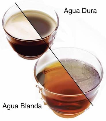 Scum_scale_oil_film_tea_coffee.jpg