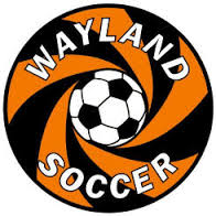 Wayland Youth soccer is the real deal!  Depending on your child's age, they have programs for you.  Visit their web site to see the many programs and Skills Clinics they have for kids K-2, 3rd grade, and 4th - 12th grade.