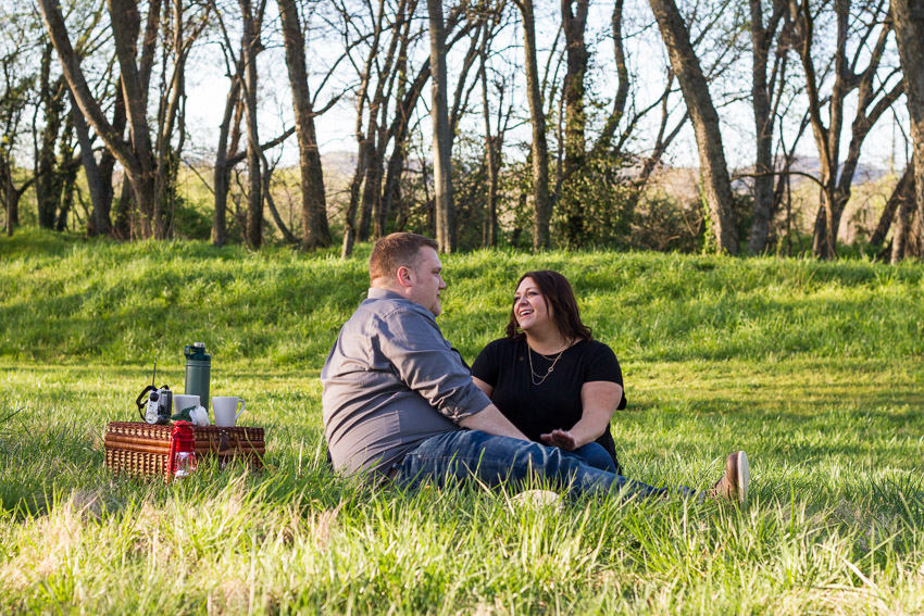 Engagement Session Picnic
