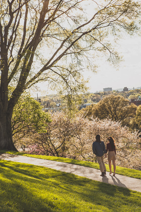 Couple walking on path behind Capitol Building
