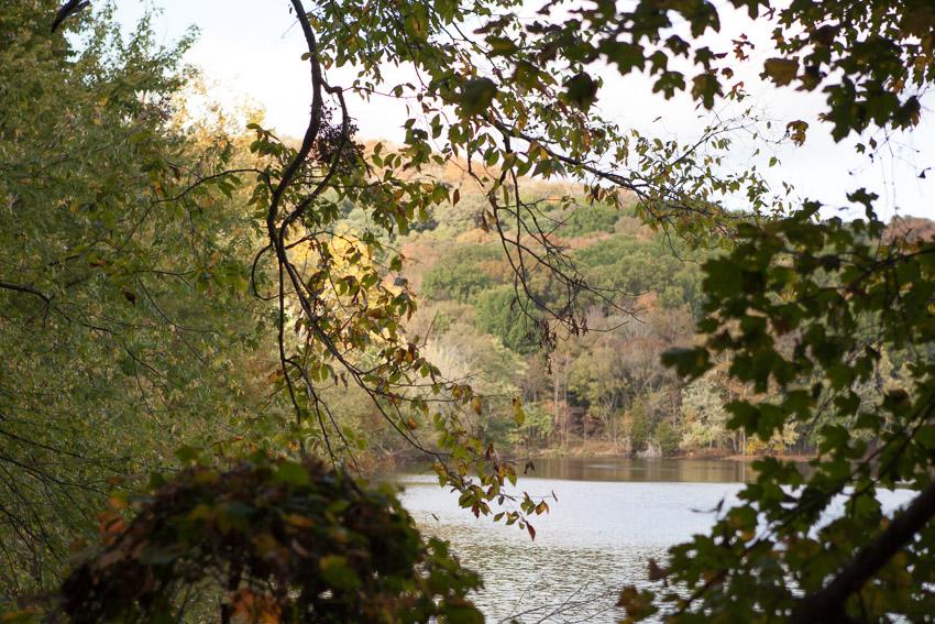 Lake Radnor