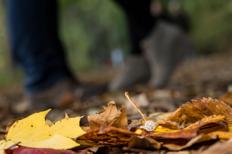 Engagement-ring-photo-leaves-lake-radnor.jpg