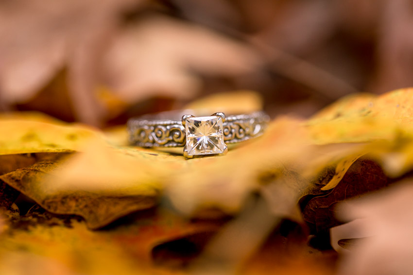 engagement-rings-on-leaves.jpg