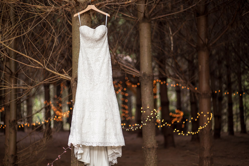 wedding-dress-in-pine-forest.jpg