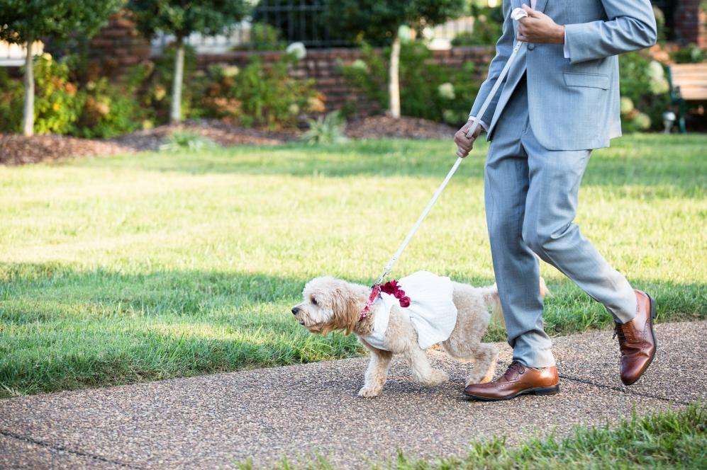 Legacy-Farms-Wedding-Haley-and-jared-Sneak-Peak-0118.jpg