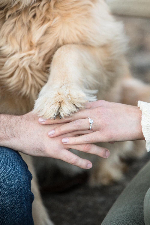 Lauren-and-Grant-Engagement-Centennial-Park-Nashville-Sneak-Peak-0006.jpg
