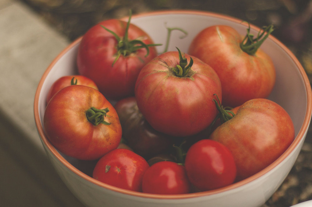 Brandywine tomatoes are my new favourite.