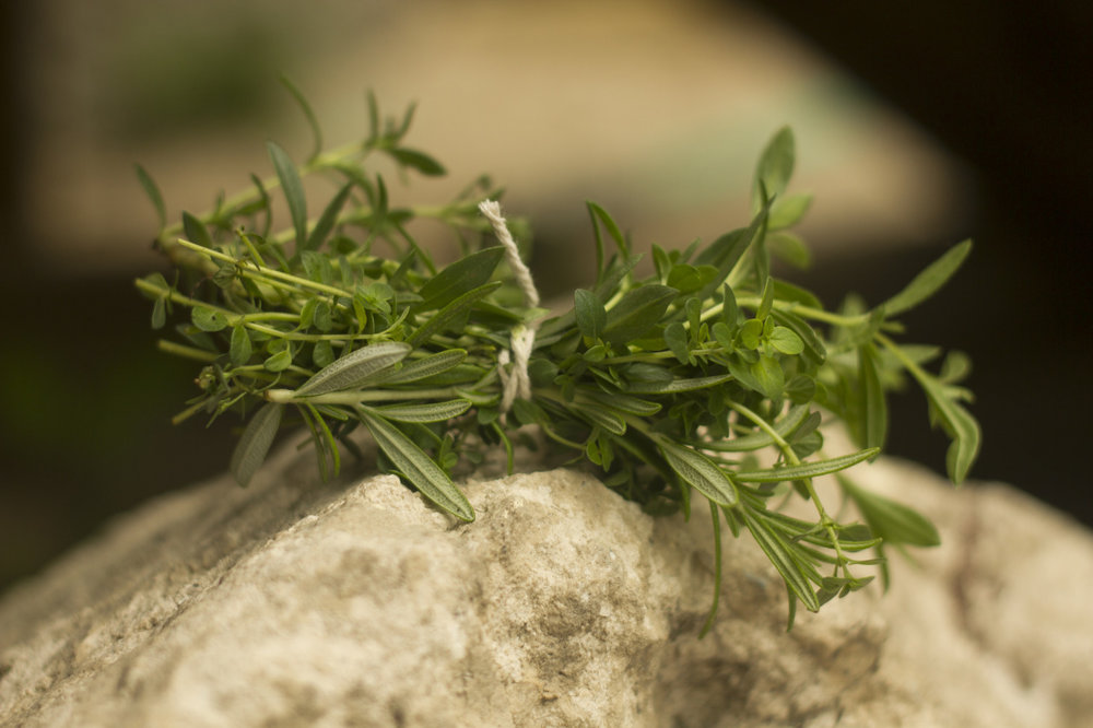 Freshly picked herbs are wonderful - Lemon thyme, savoury, and rosemary herb bunch for our chicken dinner.