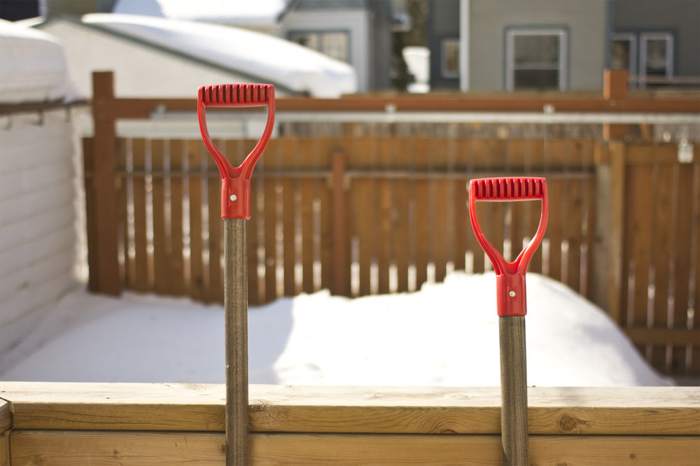 It's already nearing the end of March and summer is still sleeping under a thick blanket of snow.     One day soon, I'll trade these shovels in for ones that bring me much more joy.