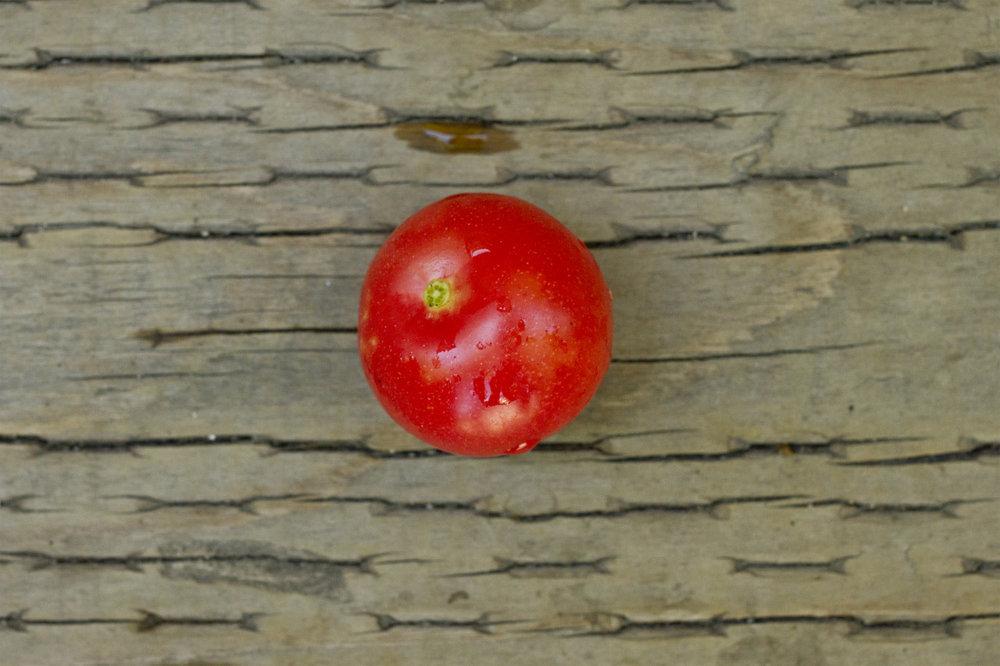 First cherry tomato!