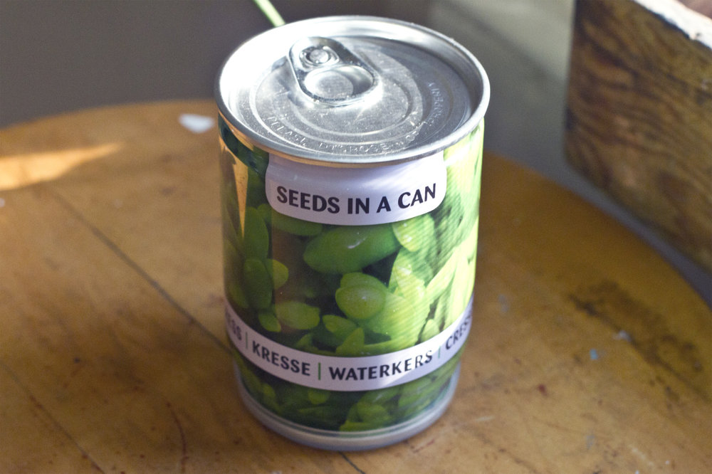 Ron went to Amsterdam and brought me back some seeds in a can!