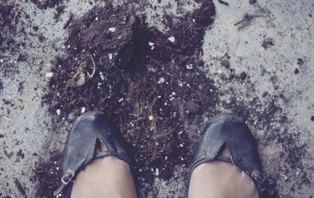 Gardening toes.