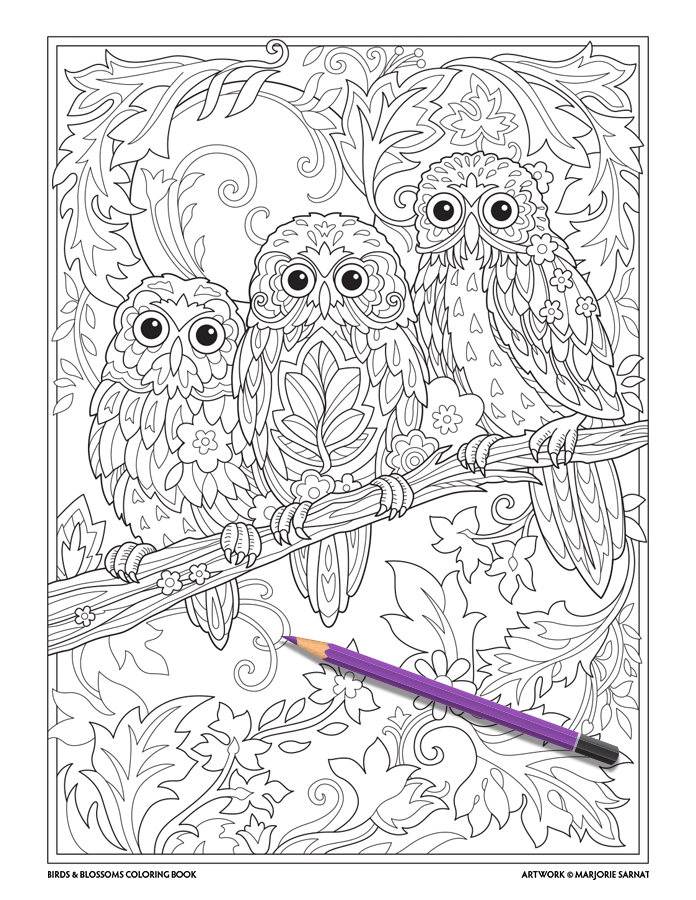 Owl Babies FINAL