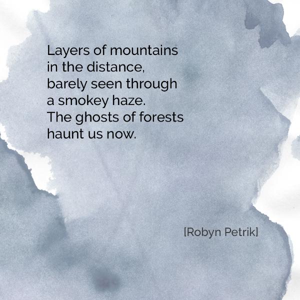 Forest-Ghosts-Robyn-Petrik