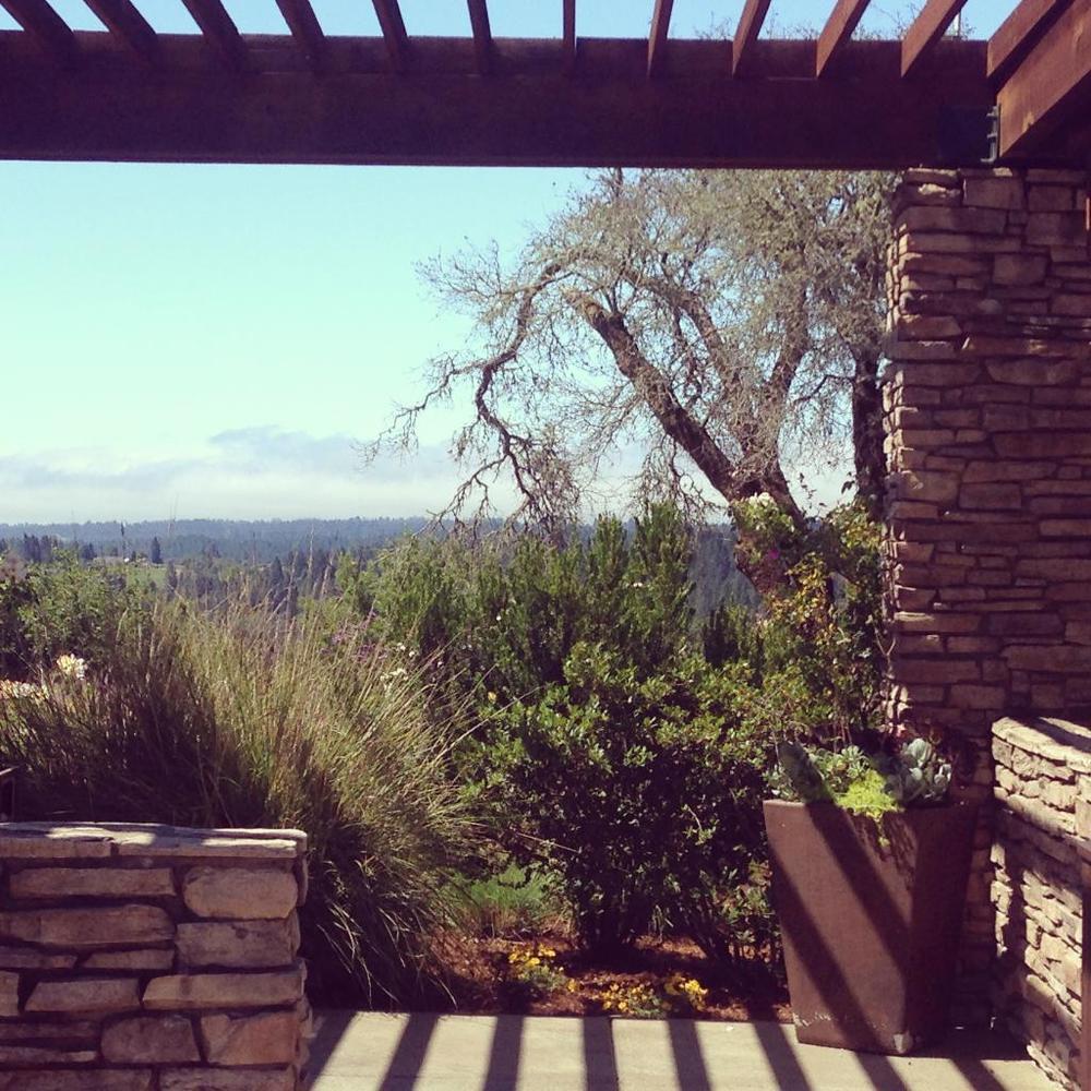 views-at-a-favorite-sonoma.jpg