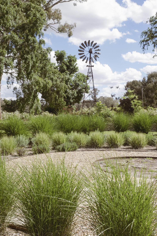 Somewhere Landscape Architects_GARDEN #4 (8)