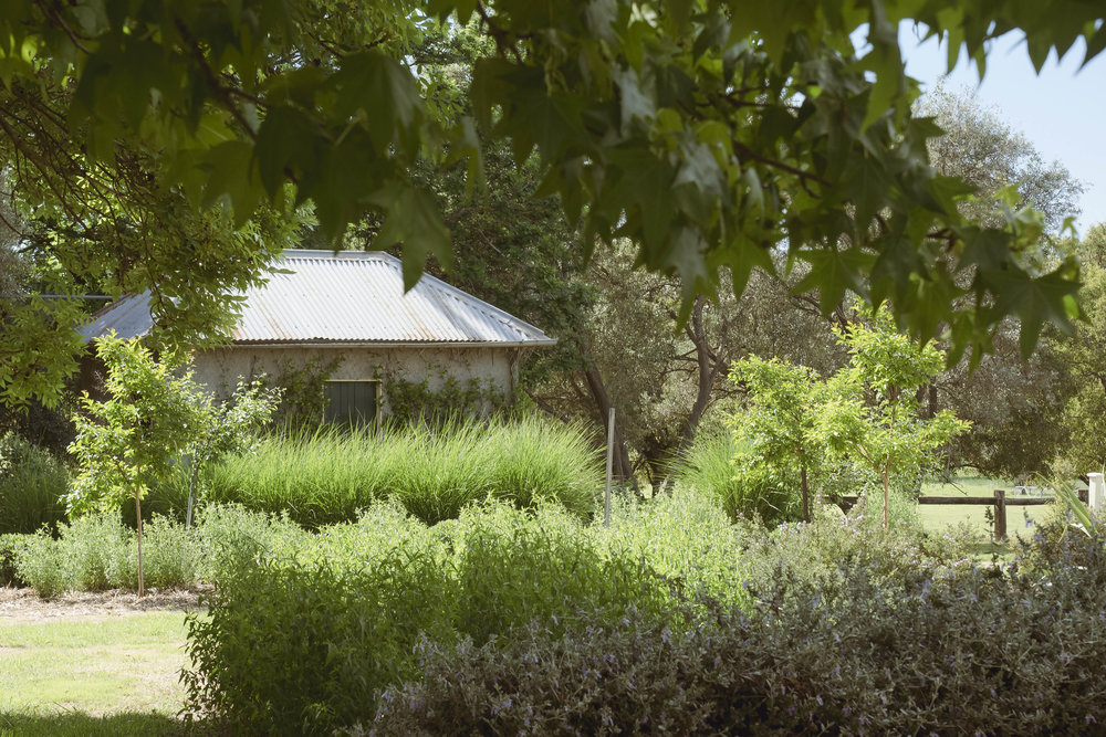 Somewhere Landscape Architects_GARDEN #4 (4)