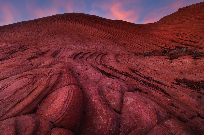 Pink Heat - Petrified Dunes, Snow Canyon State Park, UT