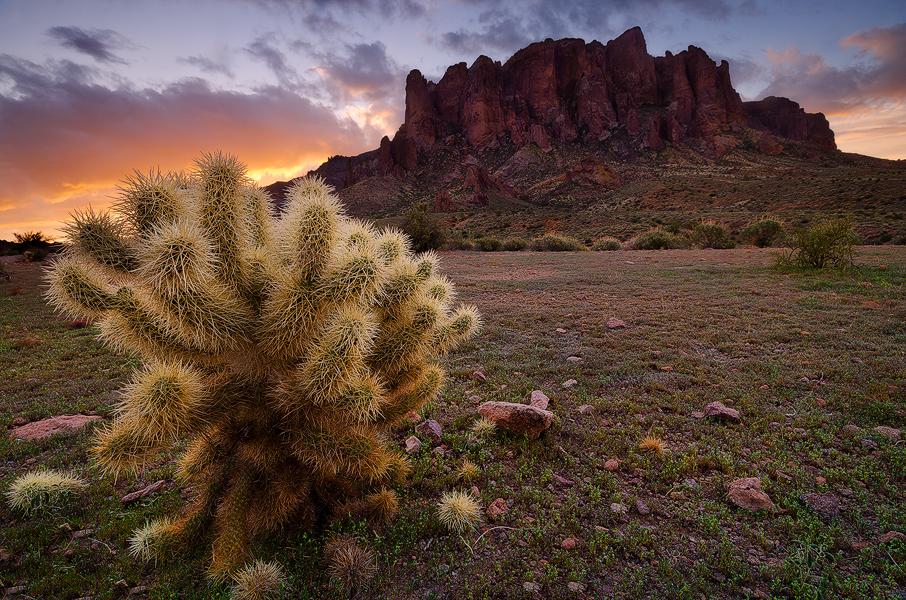 Escape - Lost Dutchman State Park, AZ