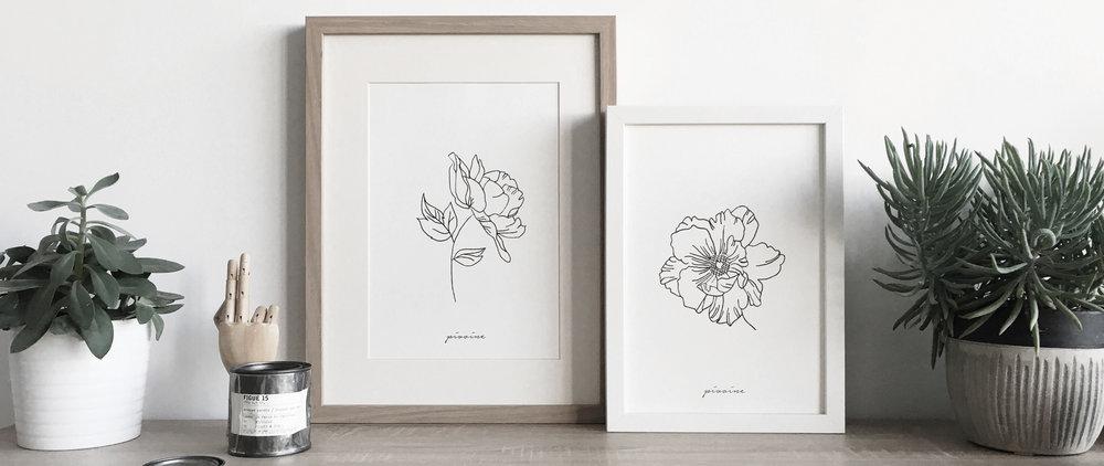 Floraison 1.jpg