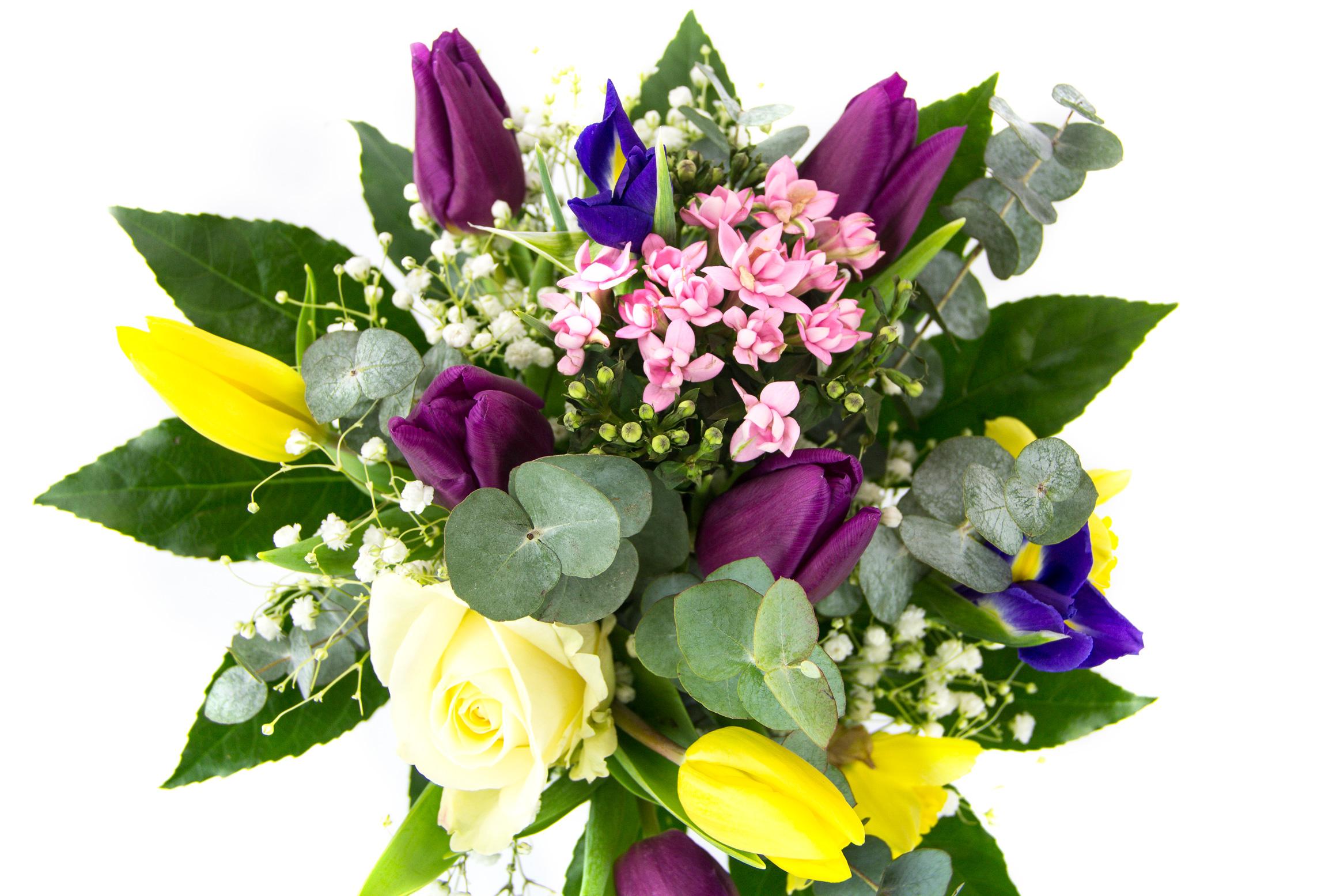 Thanks a bunch springjarcloseupg izmirmasajfo